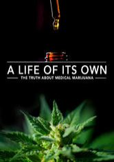 A Life Of Its Own The Truth About Medical Marijuana Netflix Documentaries